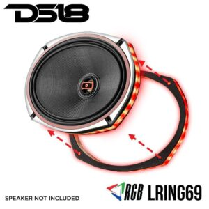 DS18 LRING69